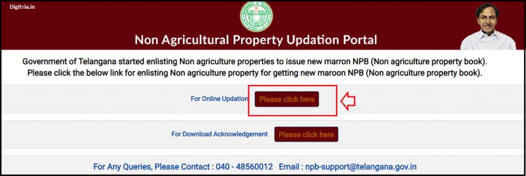 TS NPB home page