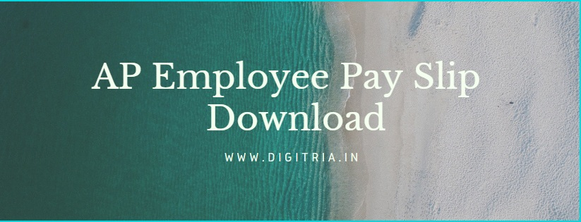 AP Employee Pay Slip