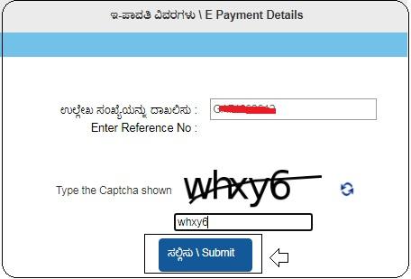 e payment status